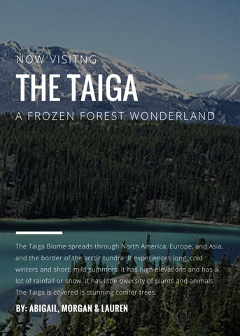 A biome is a geographical region on the surface of the earth with specific climatic features such as temperature and precipitation and favors only certain plant and animal life. The Taiga Brochure By Trinityprep95 Issuu