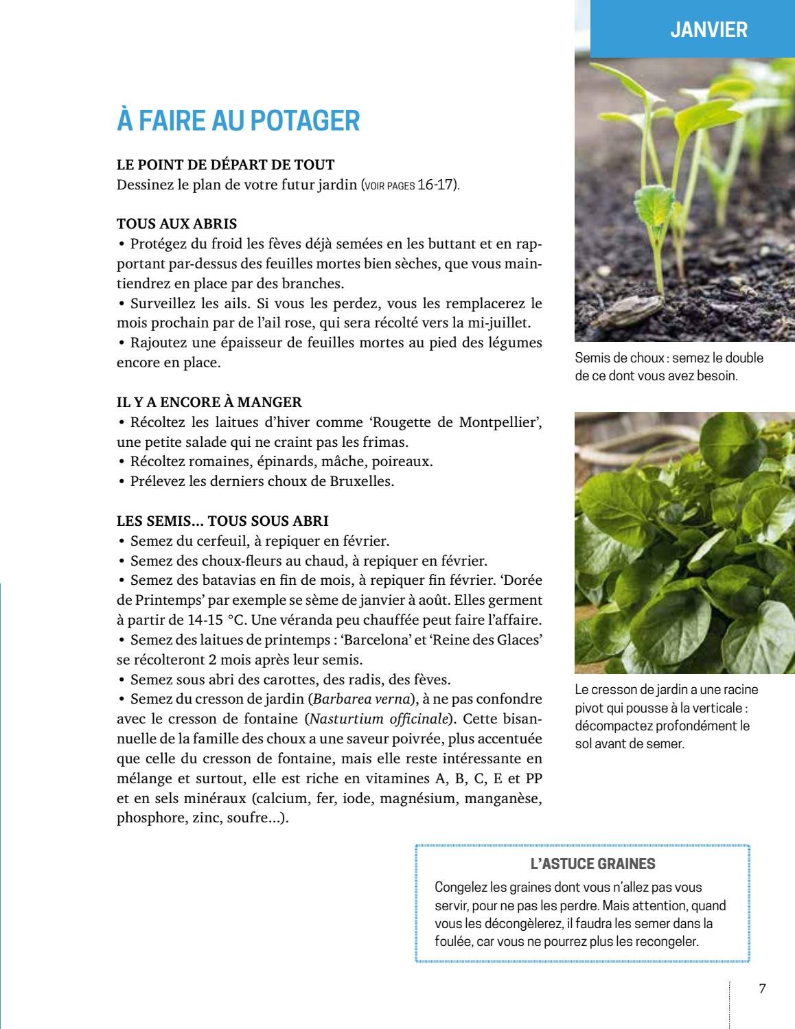 Quand Semer Les Feves : quand, semer, feves, Extrait, Permaculture, Éditions, Ulmer, Issuu