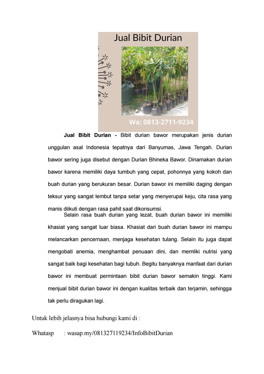 Bawok Jawa : bawok, Terlaris, Bibit, Durian, Impian, Pangkal, Pinang,, Bangka, Belitung, Jualbibitdurianjawatengah, Issuu