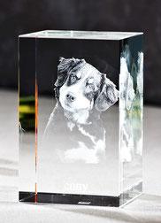3D Laser Foto in Glas - Foto Steinbauer