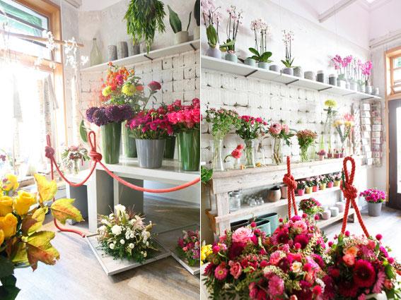 Ihr Blumenladen in Mnchen  Blumen Schachtner