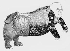 albrecht dürer rhinozeros malvorlage   Coloring and ...