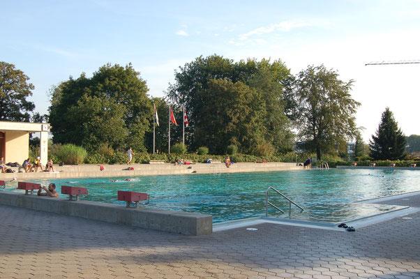 Haus A1 oder Wohnung Gerlafingen 30 Min Bern  Immobilien Kanton Solothurn