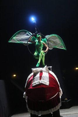 Peter Pan Noel Au Pays Imaginaire : peter, imaginaire, PETER, Noël, Imaginaire, BéBé, Charli