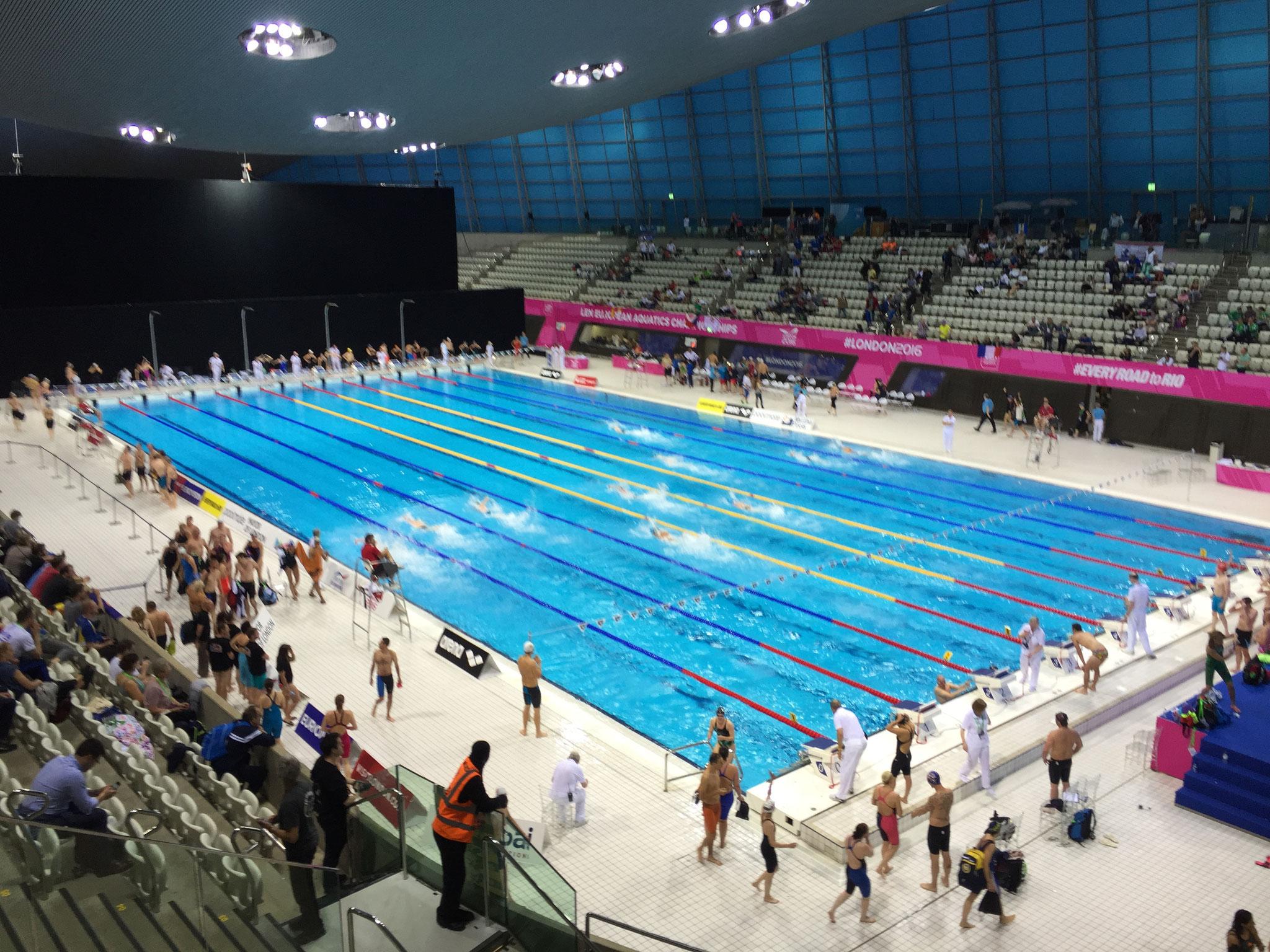 Rennes Natation  Site du club Rennes Natation Le club de natation sportive adultes