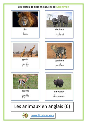 Liste des insectes, oiseaux et animaux pour T - U