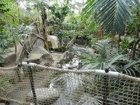 Bilder Het Heijderbos Jungle Dome - insideholidays.de