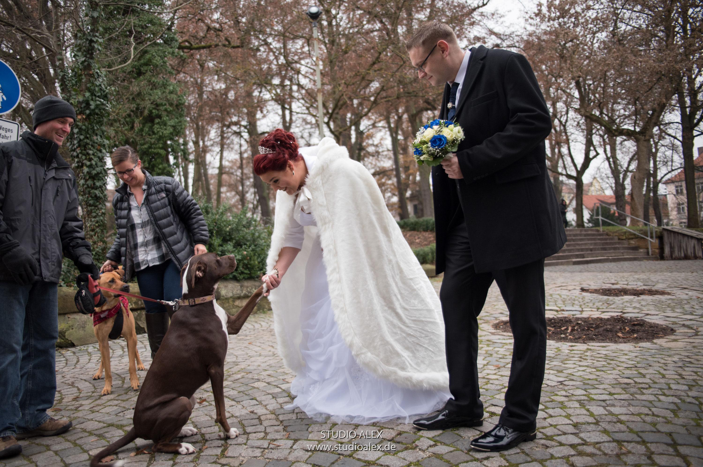 Auergewhnliche Hochzeitsfotos Ideen  Studio Alex