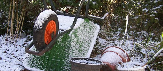5 Gartentipps Im Februar Gartenstadt Waltrop