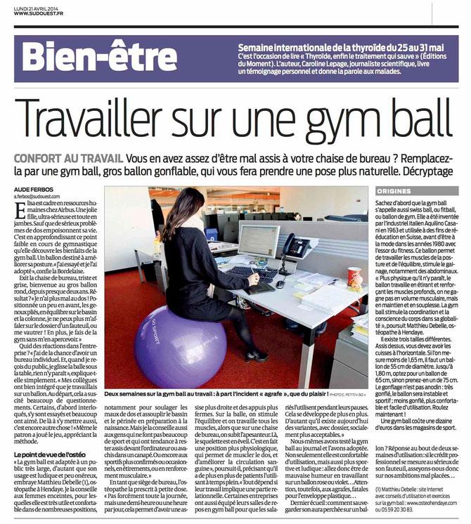 Swiss Ball Et Ostopathie Hendaye Matthieu Debelle