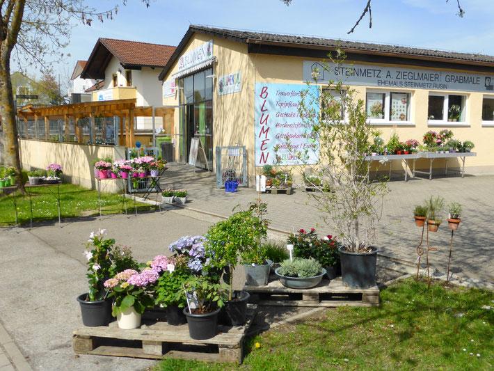 Ihr Blumenladen in Ingolstadt Blumeneck am Sdfriedhof  blumeneck1s Webseite