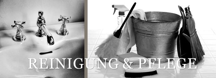 Reinigung Und Pflege Von Badezimmerfliesen Startseite Design Bilder