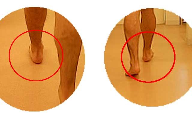 踵の痛みはなぜ出るか?正しい踵の使い方 - 足の痛みの特化ラボ