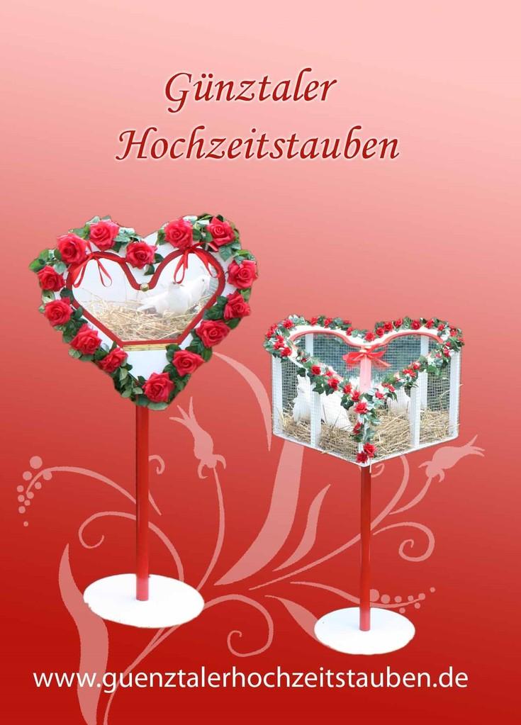 Gnztaler Hochzeitstauben Hochzeits und Event Messe