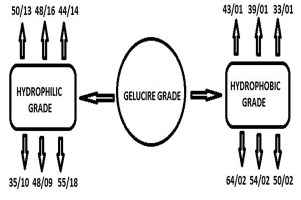 Gelucire: A versatile polymer for modified release drug