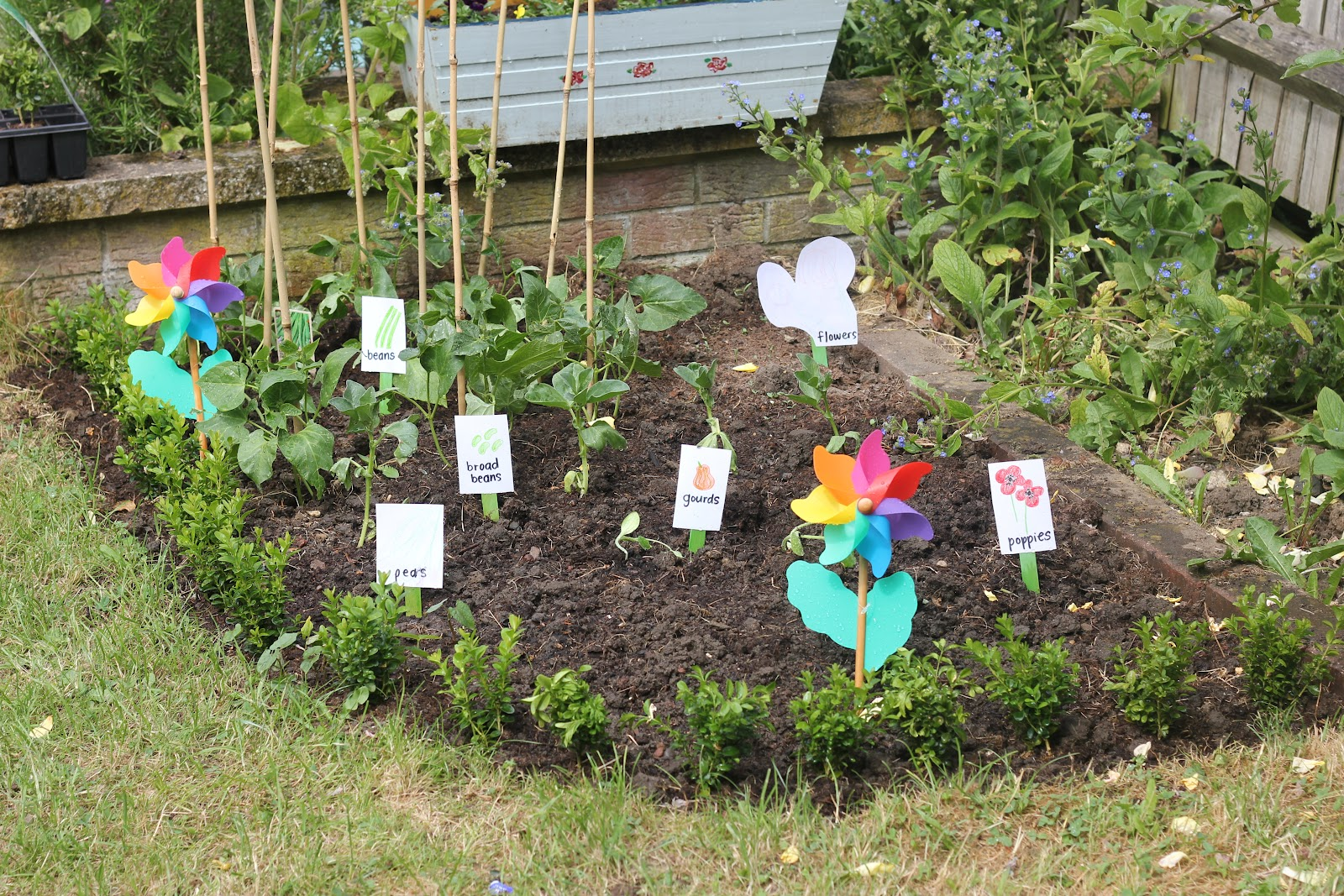 How To Create A Child S Garden To Grow There Own Produce