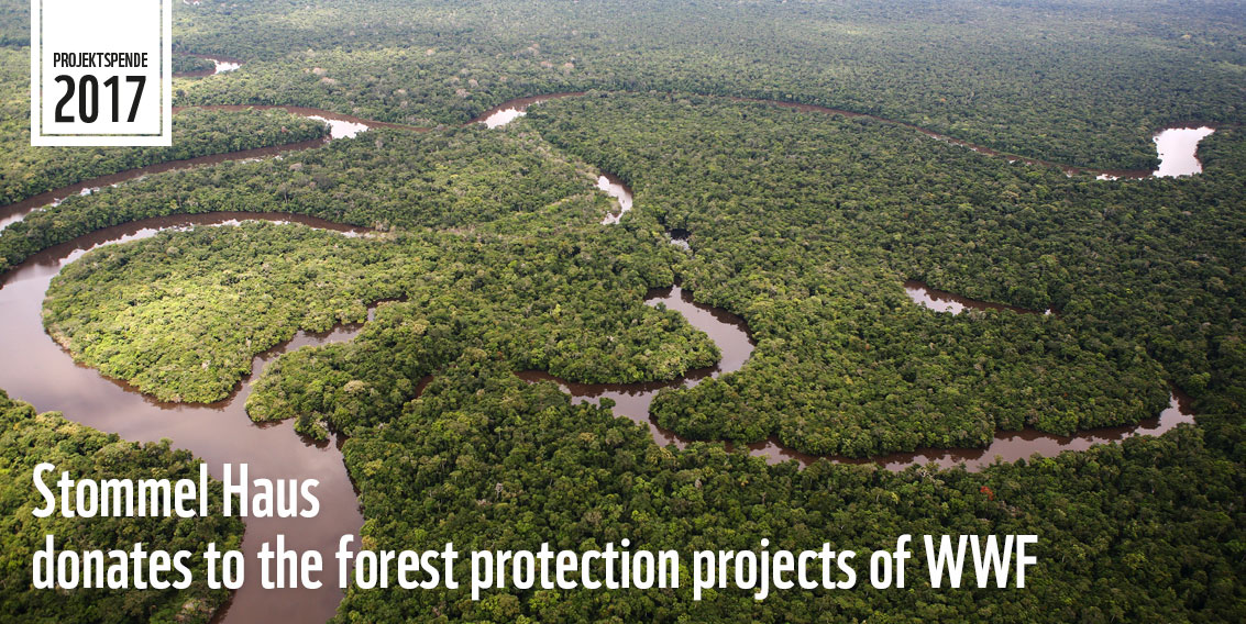 WWF Forest Protection Projects Supported By Stommel Haus