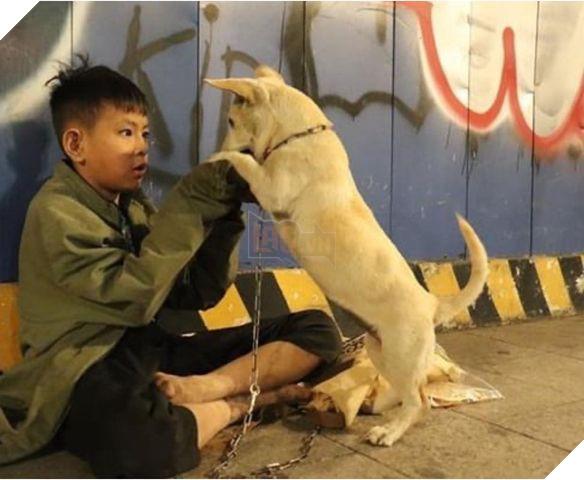 """Cậu bé ôm cún cưng co ro giữa đêm giao thừa trên phố Nguyễn Huệ:""""em ước có một mái nhà che nắng mưa 5"""