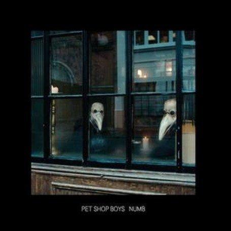Pet Shop Boys Lyrics  LyricsPond