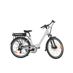 China Easy Rider Electric Bike, Easy Rider Electric Bike