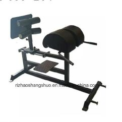 Chair Gym Commercial Bungee Papasan China Custom Crossfit Ghd Roman