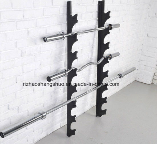 china gym equipment wall mounted