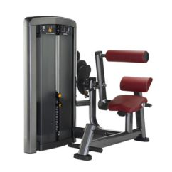 Roman Chair Back Extension Muscles Big Wicker China Gym Planet Fitness Xh912 Pictures Photos