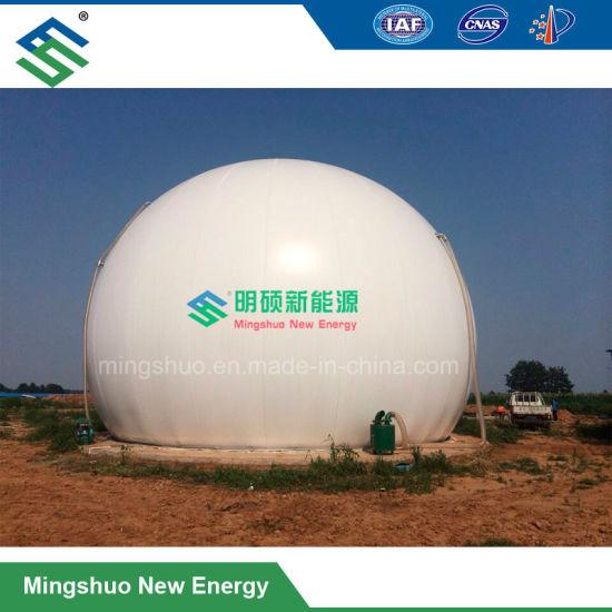 china biogas storage bag