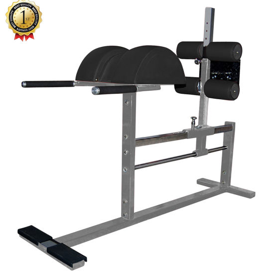 roman chair gym equipment round futon china crossfit glute ham developer fitness machine pictures photos