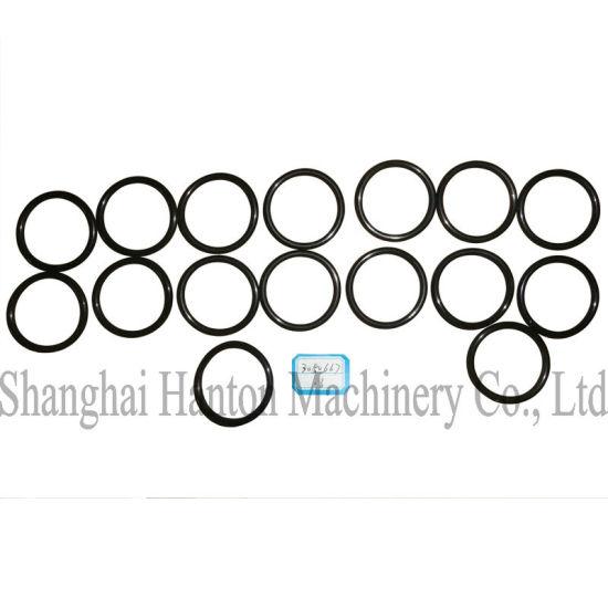 China Cummins NTA855 Diesel Engine Part 3050667 Seal O