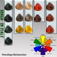 China OEM Hair Color Swatch Book - China hair color swatch ...