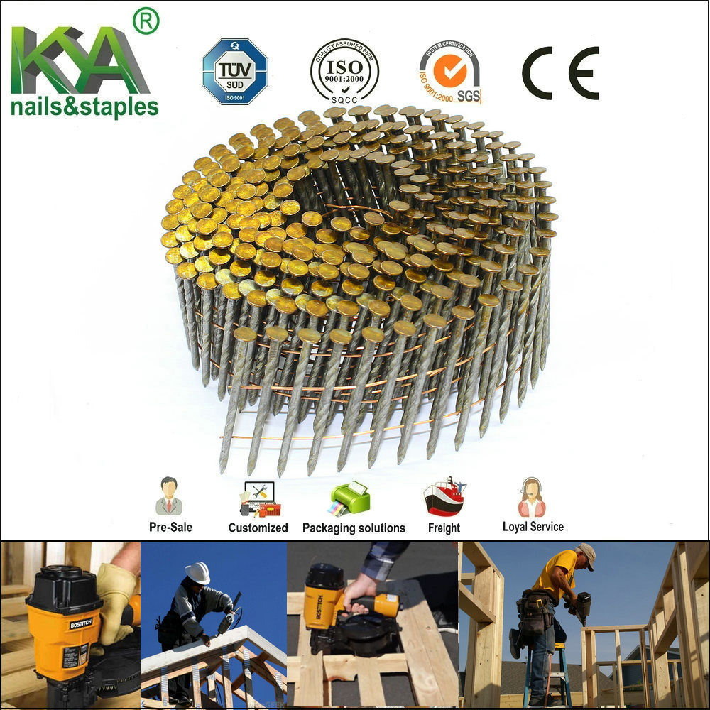 medium resolution of screw shank coil nail for construction and packing