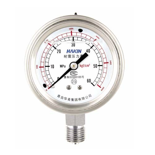 China Gas Pressure Gauge - China gas pressure gauge. auto meters