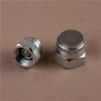 China Bsp Female 60 Cone Hydraulic Hose Plug Hose Fitting