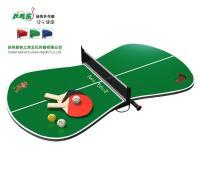 China Mini Table Tennis Set - G (YY12TTS02-G) - China ...