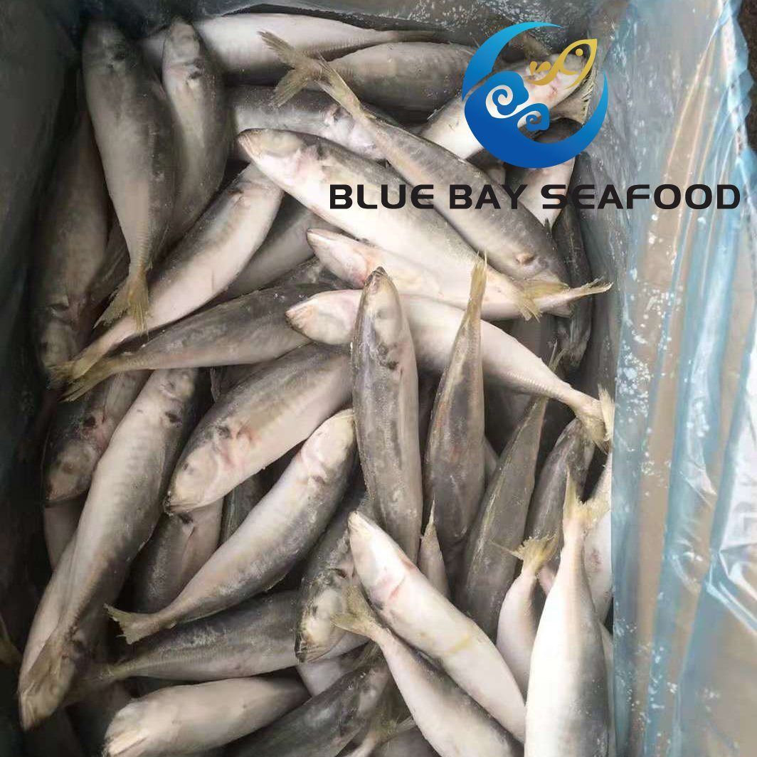China Seafood Suppliers