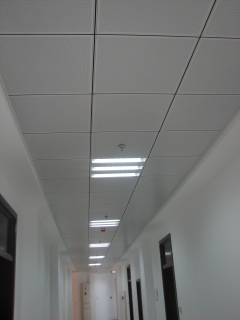 Perforated Lay in Ceiling Photos & Pictures