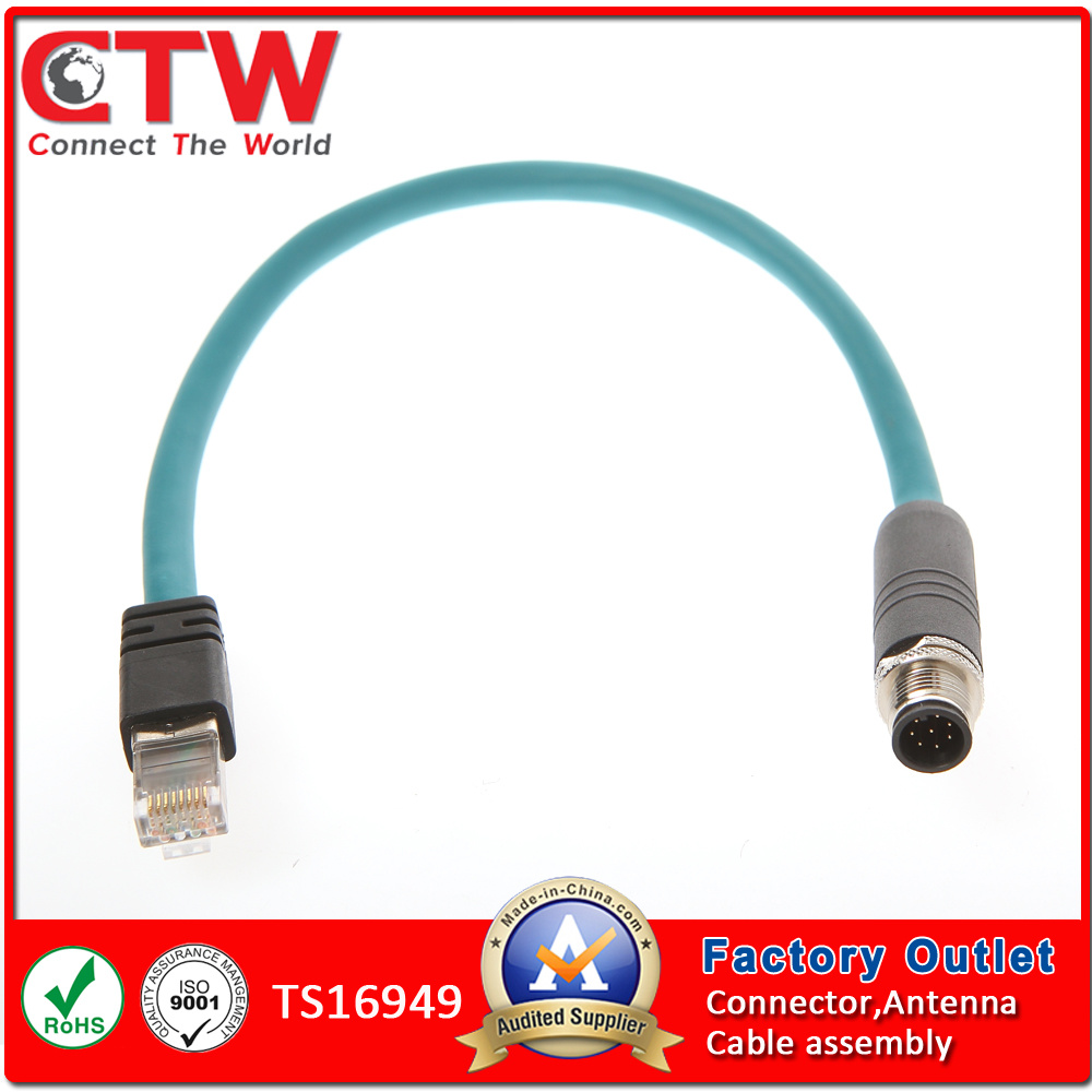 hight resolution of china m12 to rj45 wiring harness china wire harness wiring harness