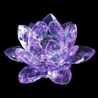 China Crystal Lotus Flower (PW