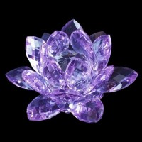 China Crystal Lotus Flower (PW-013) - China Crystal ...