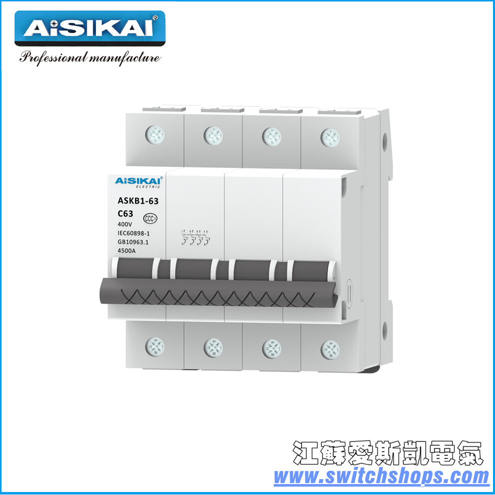 hight resolution of china 125a 2poles miniature circuit breaker in house china circuit breaker rccb