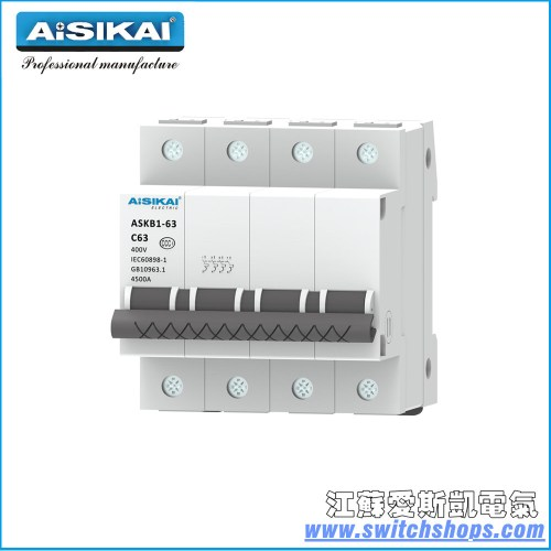small resolution of china 125a 2poles miniature circuit breaker in house china circuit breaker rccb