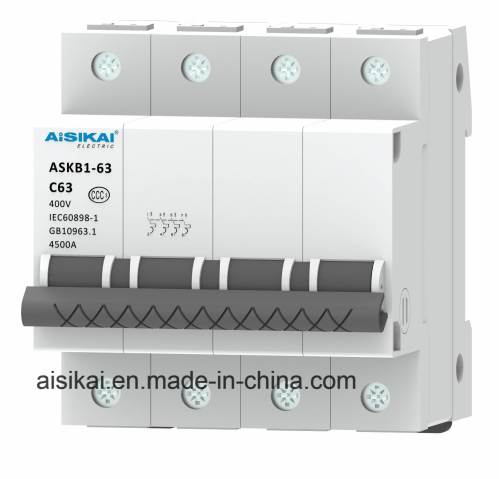 small resolution of china 125a 2p miniature circuit breaker mcb in house china circuit breaker rccb