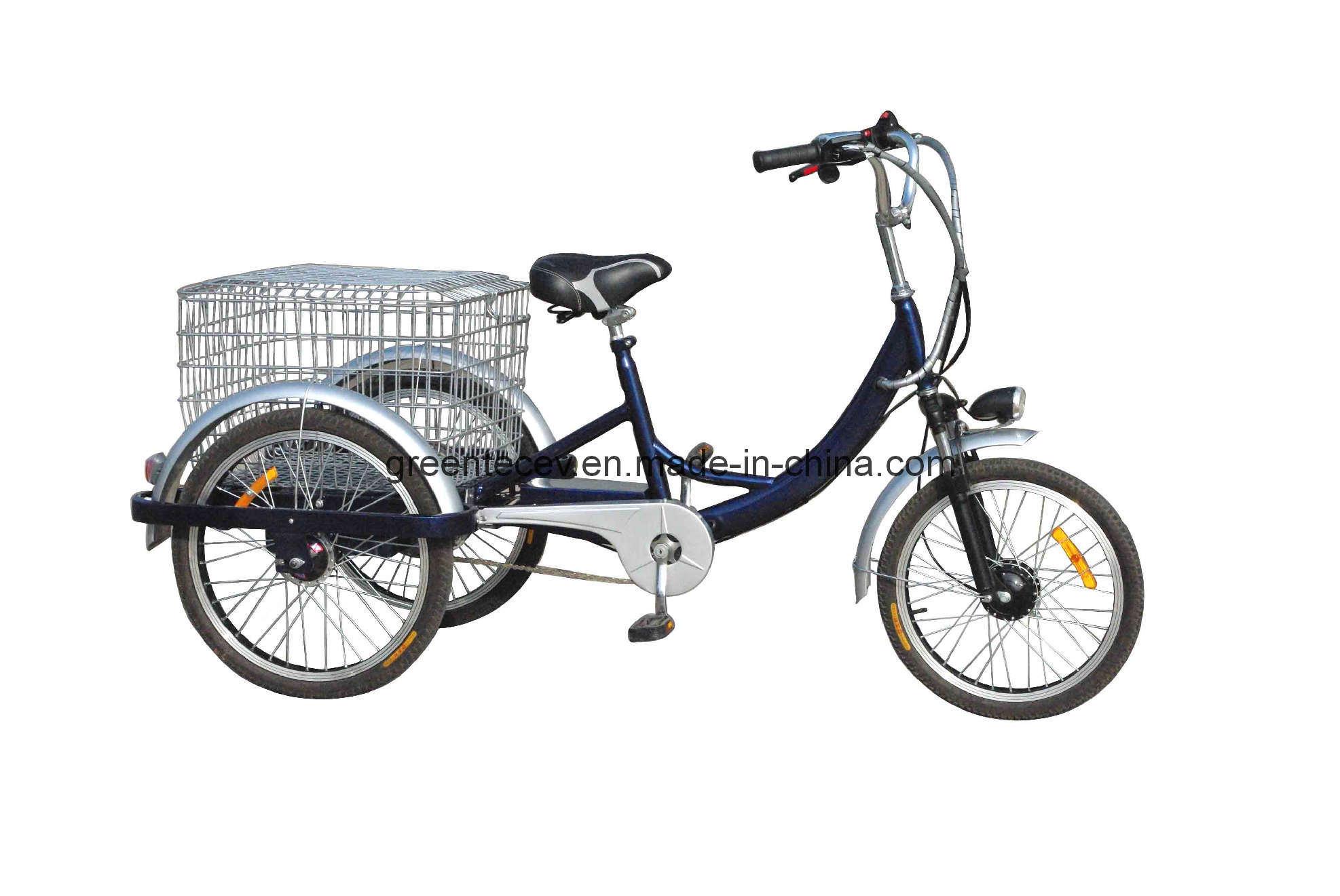 China Electric Tricycle/ Electric Trike/ Three Wheel