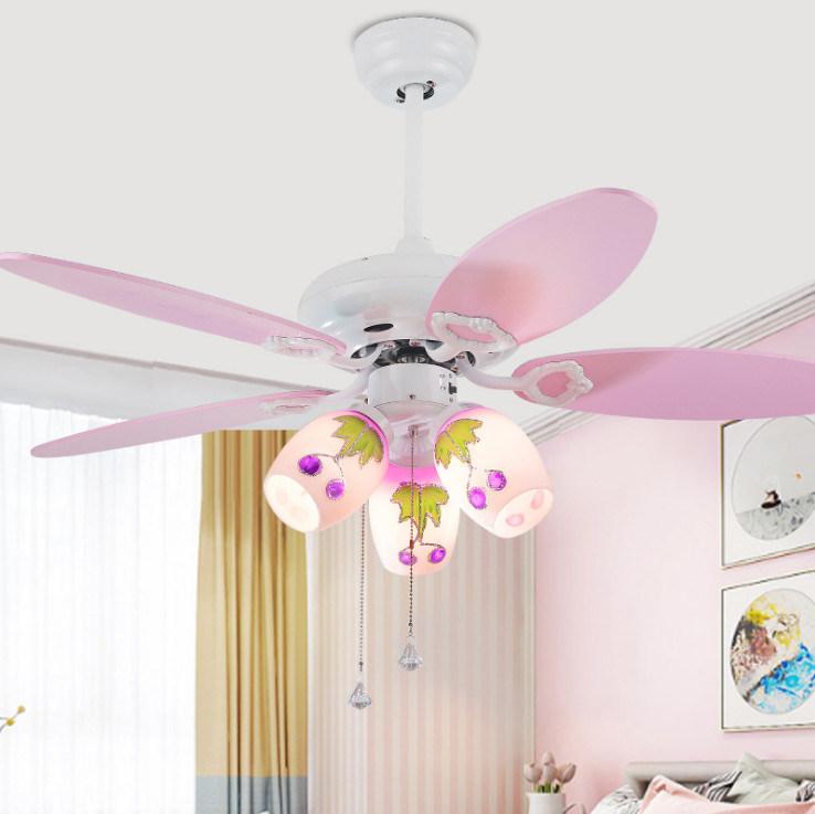 ceiling fan lighting fixture