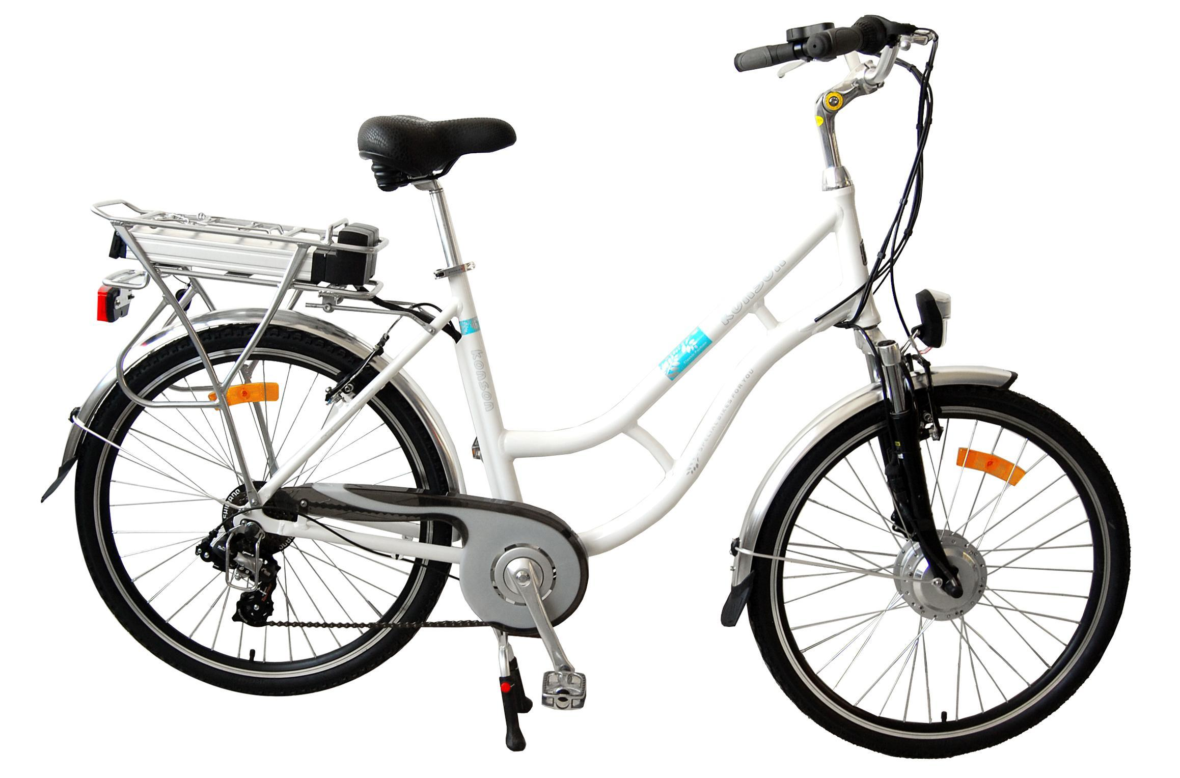 China Holland Style Electric Bicycle Tdf 304z
