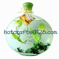 NEW 523 OIL LAMPS MADE IN CHINA