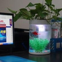 China Office Hotel Bar Counter Aquarium Acrylic Fish