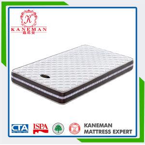 2016 New Model Rolled Foam Mattress