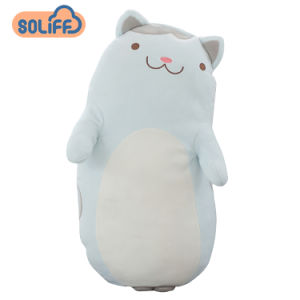 china factory direct sale soft cat